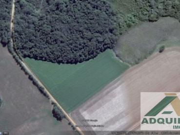 Fazenda Periquitos Ponta Grossa 110825-4