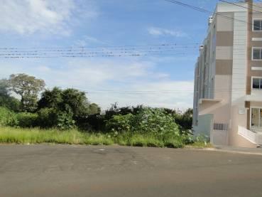 Terreno Estrela Ponta Grossa 21091-4